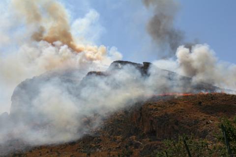 bosques-ardiendo