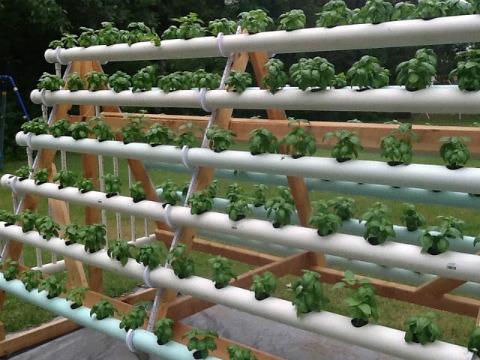 jardin-en-casa-ecoinventos