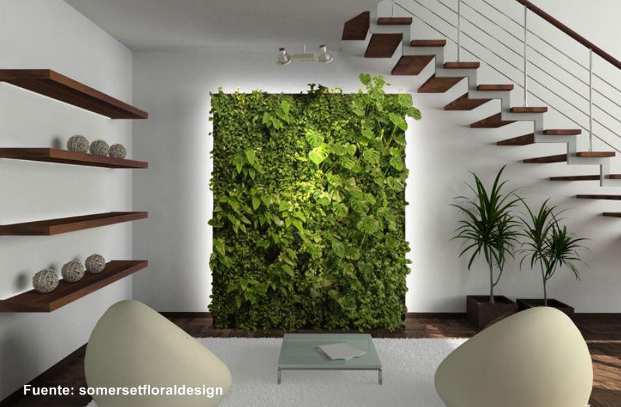 Monta un jardín en tu casa