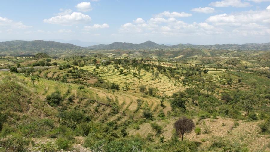 Los países en desarrollo, ejemplo de como cuidar el medio ambiente